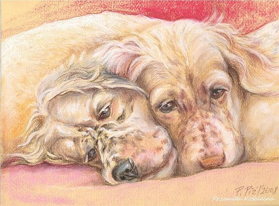 Custom pet portrait Pastel drawing from photos by CanisArtStudio, #animalportrait