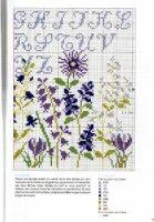"Gallery.ru / fialka53 - Альбом ""DFEA HS 20 Tout Bleu."""