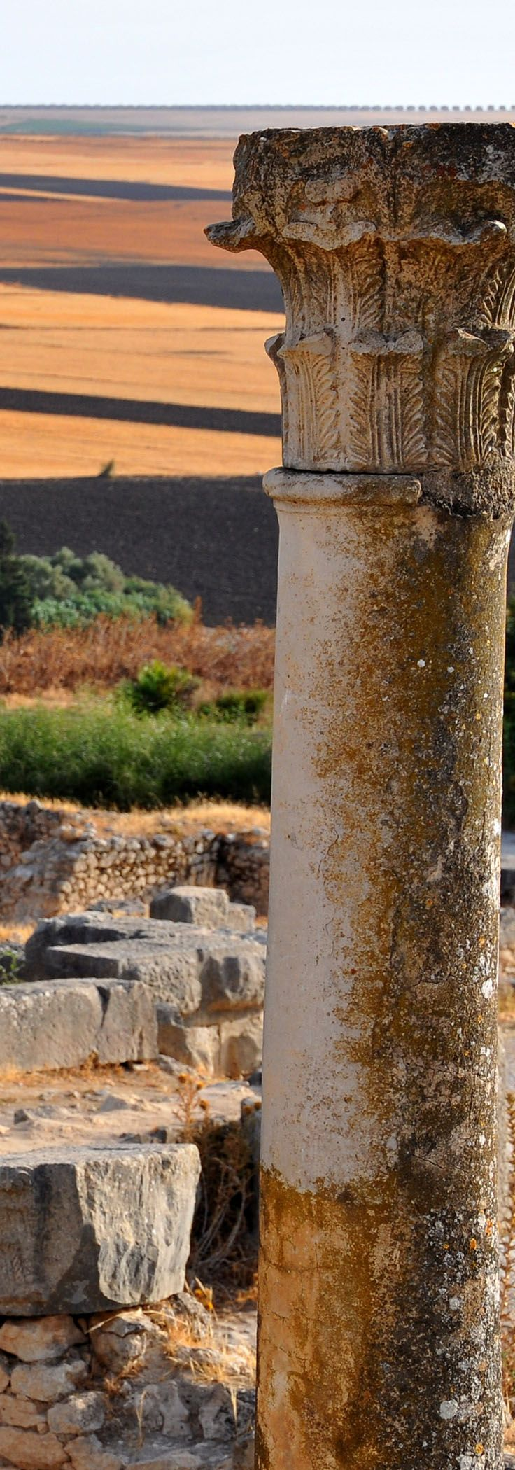 Archaeological Site of Volubilis - Morocco | Africa