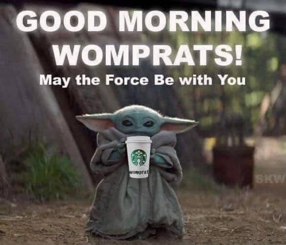 Baby Yoda Good Morning Womprats Yoda Meme Star Wars Memes Yoda
