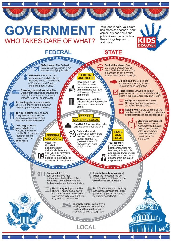 Terrific infographic on our government - who takes care of what?