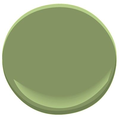 Kitchen paint color-Benjamin Moore forest hills green