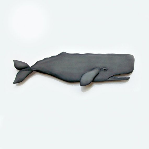 48 inch SPERM WHALE art wood sculpture collectible by WOODNARTS