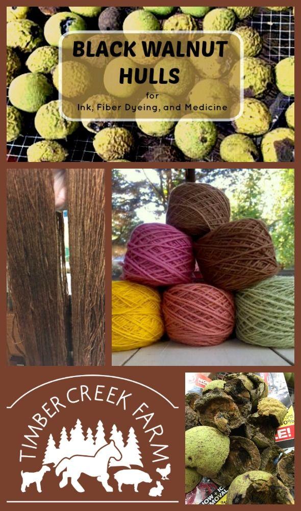 Black walnut hulls for ink, fiber dyeing, and medicine.