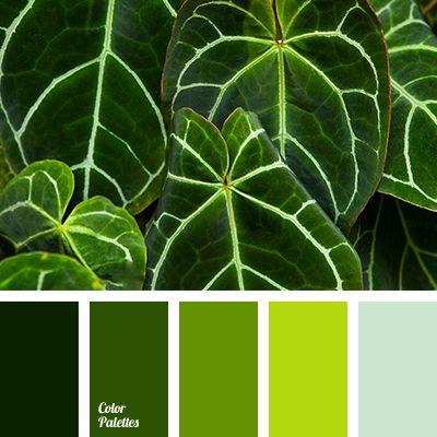 bright green, bright light green, color of green, color of green leaves, dark green, deep green, light green, pale green, shades of green.