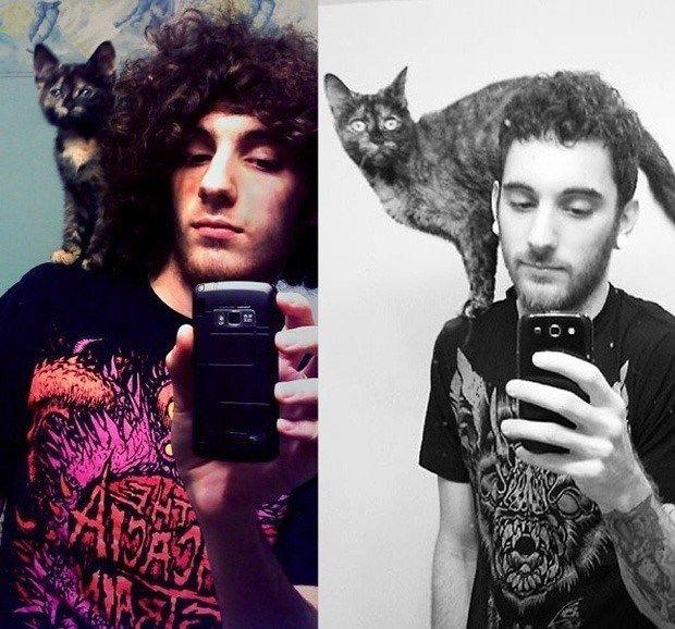 19 Cats Recreating Their Favorite Kittenhood Photos