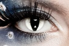 Costumes are fun.... but eye infections are not. Please do NOT share other people's costume contacts! Fresh lenses with an updated contact lens prescriptions is the only way to go! You don't trade a few hours of looking wild for a lifetime of not seeing.