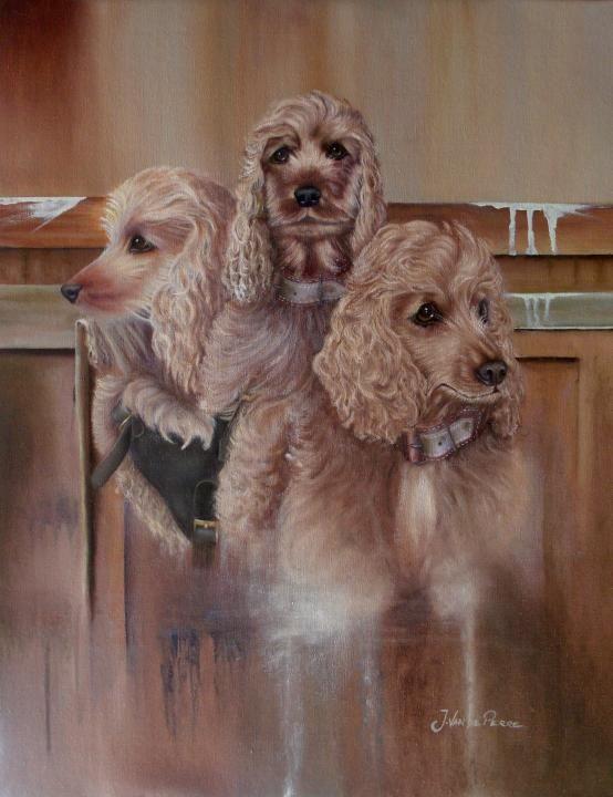 Triple portrait of my doggie