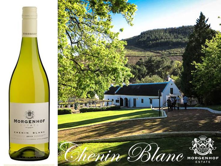 A wonderful expression of refreshing pear, apricot and citrus flavours, well-integrated with French oak. The wine finishes with a lingering sensation of dried fruit and soothing creaminess. It's a great day to visit the estate and try our Chenin Blanc!