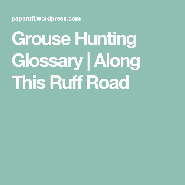 Grouse Hunting Glossary | Along This Ruff Road