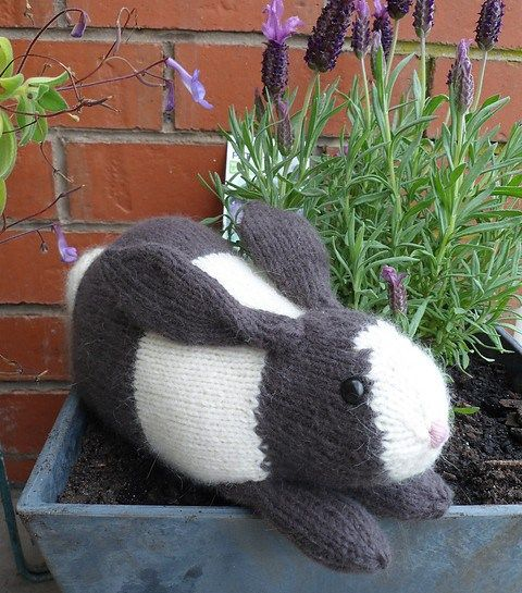 Knitting Patterns For Pet Rabbits : Meer dan 1000 idee?n over Knitted Toys Patterns op Pinterest - Breipatronen, ...