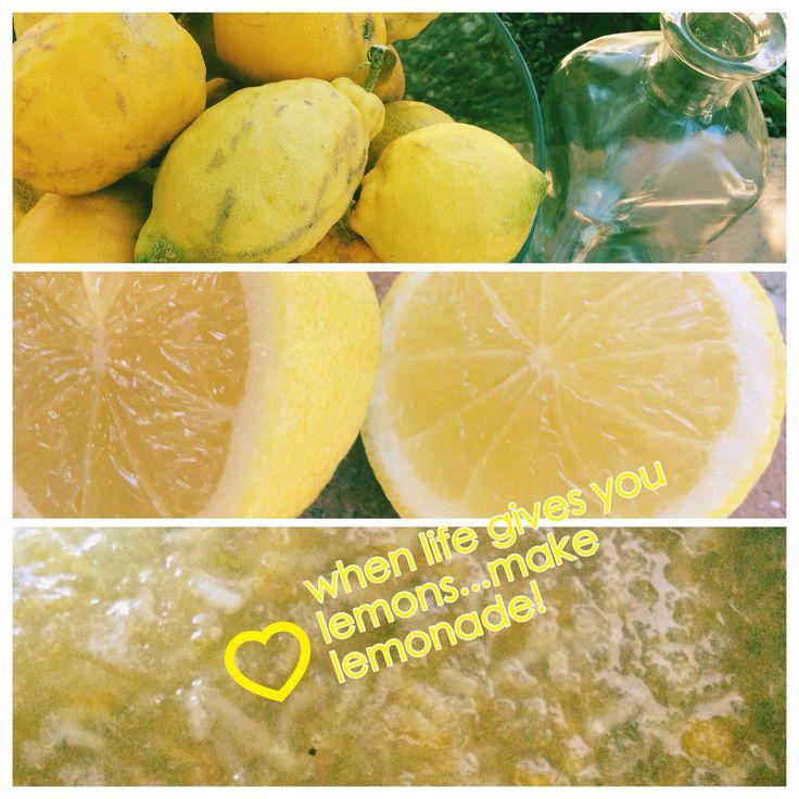 Citroensiroop en limoncello maken van onze eigen citroenen!