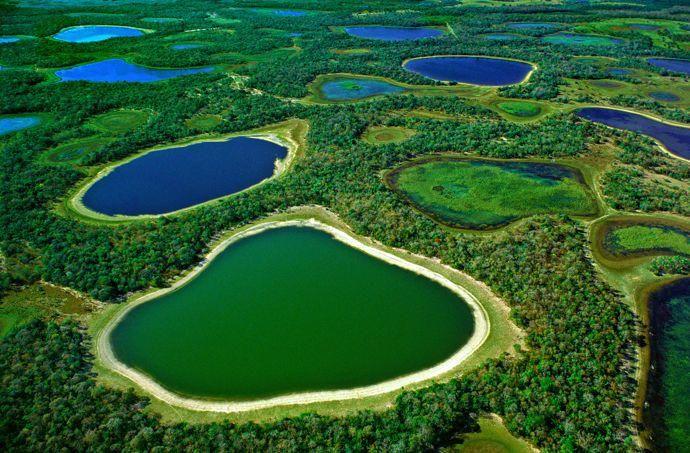 La plaine inondable du Pantanal est composée de lacs, lagunes saumâtres et de rivières, séparés par des îlots et cordons forestiers.