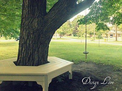 Tree bench.