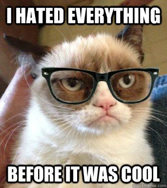 i hated everything before it was cool - Grumpy Hipster Cat