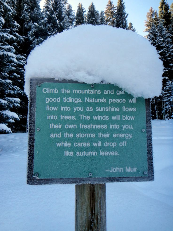 John Muir In memoriam to the man who preached preservation of things too holy to be turned into the profit of a few.
