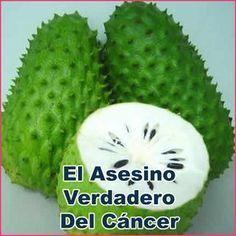 VALE LA PENA, COMPARTIRLO NUEVAMENTE.... LA FRUTA QUE CURA EL CANCER Y ES 10.000 VECES MAS FUERTE QUE UNA QUIMIOTERAPIA Y NO QUIEREN QUE LO...