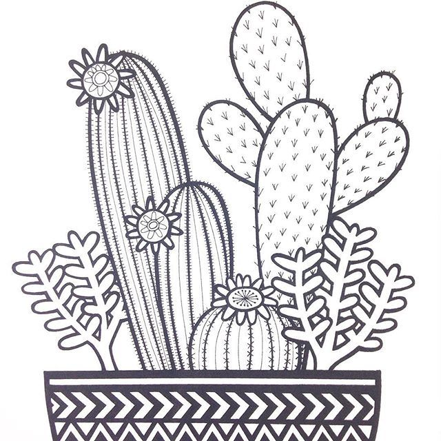 Cacti screen print only £10 this week! @janefosterdesigns #cactiprint