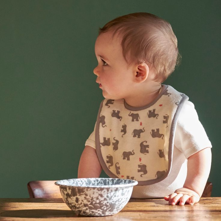 reversible bib / nature baby