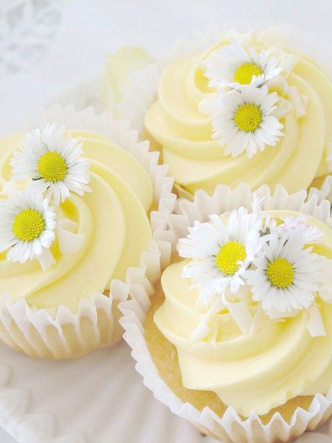 Lemon Daisy Cupcake ~ Photography by sweet berry me, via Flickr
