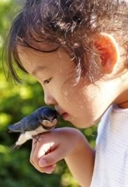 Educação Ambiental desde a Primária : Petição Pública