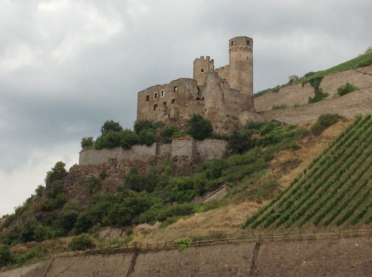 A castle by the Rhine.