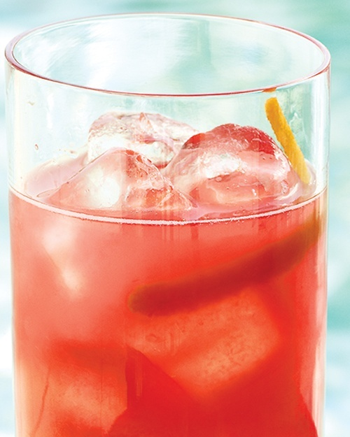 Fresh Grapefruit-Campari Cocktails - Martha Stewart Recipes