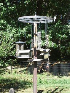 bird feeding station ideas - Google Search