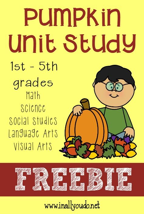 What kid doesn't love to carve and/or decorate a pumpkin? Take advantage of that curiosity with this FREE Pumpkin Unit Study for 1st-5th grades!! :: www.inallyoudo.net