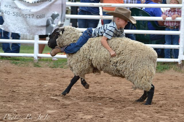 774 Best Images About Rodeo On Pinterest The Bull The
