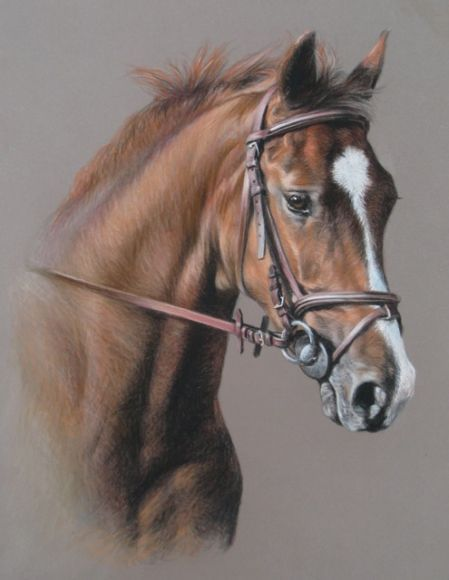 Les 25 meilleures id es de la cat gorie tete de cheval - Dessin de cheval magnifique ...