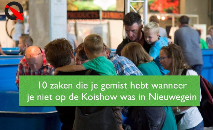 10 zaken die je gemist hebt wanneer je niet op de Koishow was in Nieuwegein - http://koiquestion.com/nl/2016/10/15/10-zaken-gemist-hebt-wanneer-er-was-nieuwegein/ #Evaluatie, #Koi2000, #Nieuwegein