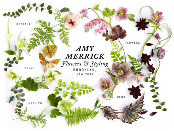 Site for Sore Eyes: Amy Merrick | Creature Comforts
