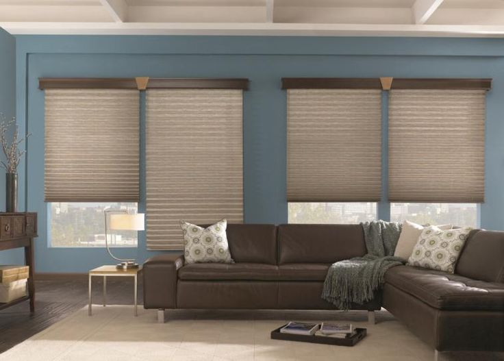 Energy Efficient Pleated Shade Without Cords Perfect For Side By Windows Repinned Living Room BlindsLiving