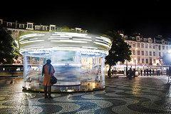 Joel Vieira - The Lady Of The Carousel