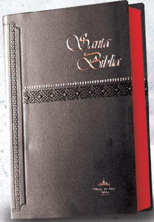 Biblia Negra Nuevo Testamento Vol 2 - Hentai