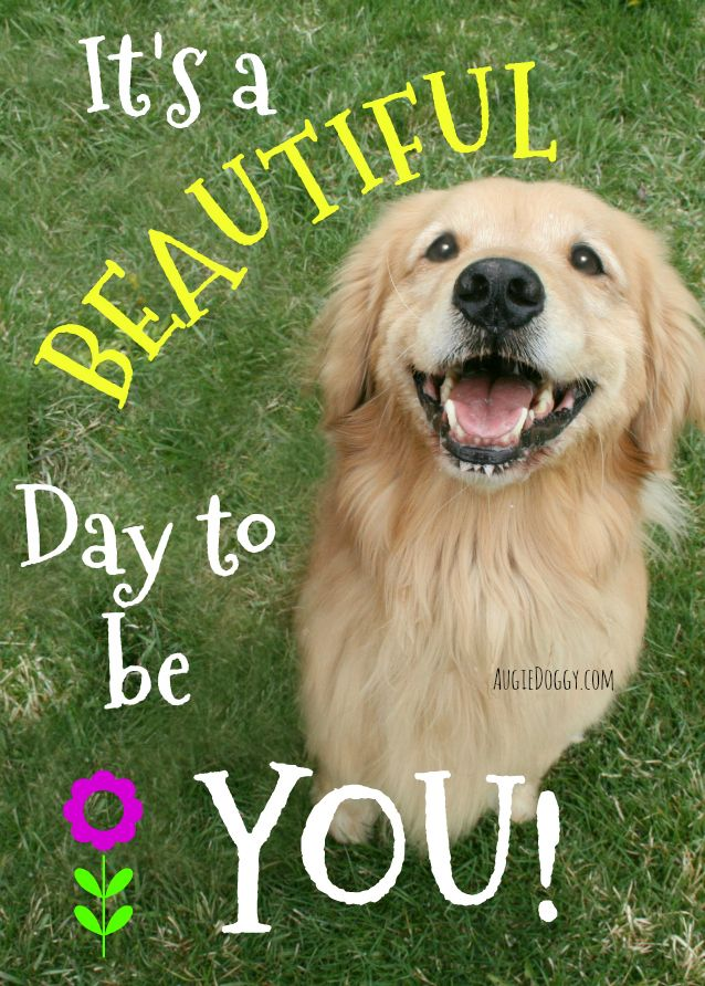 It S A Beautiful Day To Be You Quote Inspirational Golden
