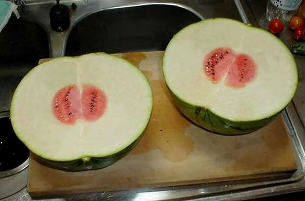 These Watermelons Are Disappointing