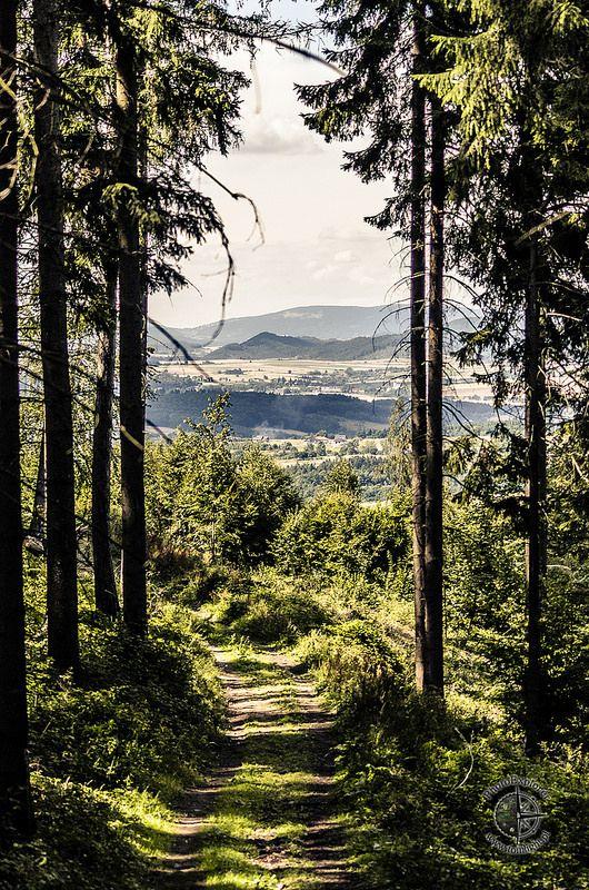 Sudety Wschodnie - Góry Bardzkie