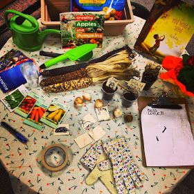 Gardening provocation. Add pots of soil in the sensory table for planting or better yet, do this provocation outside near the children's garden with hand tools.