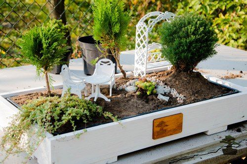 How to Make a Mini Garden. Step by Step