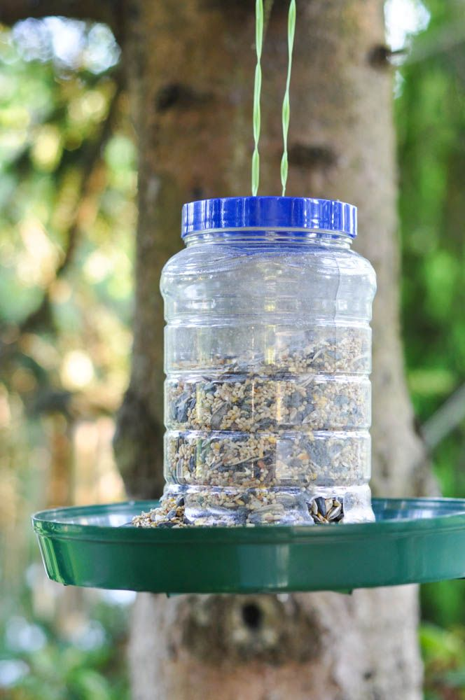 Upcycled bird feeder from a peanut butter jar suburble for Plastic bird feeders