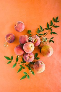 peach flat-lay with oranges and contrasting colors