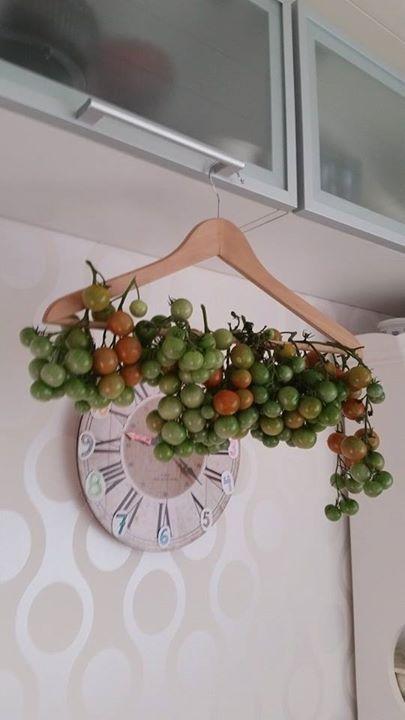 Hieno idea säilyttää erilaisia varellisia hedelmiä ja ruokia, jotka voivat hyvin valosta ja huoneenlämmöstä!