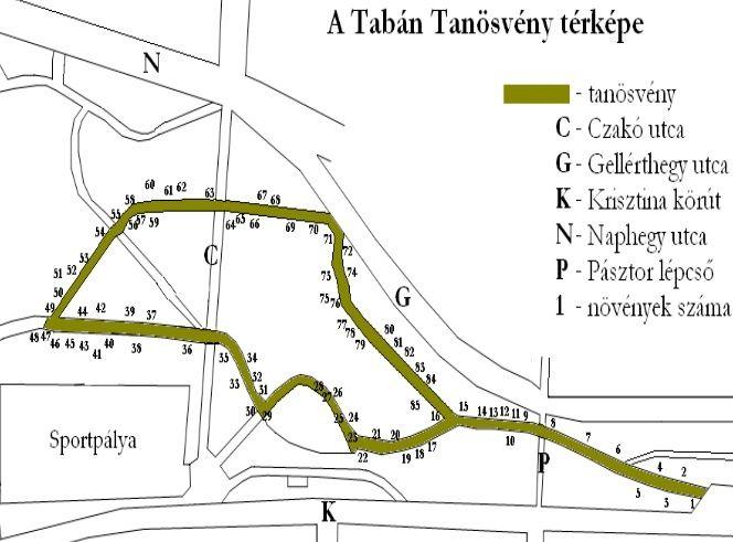 Tabáni tanösvény (Budapest I. kerület) http://www.turabazis.hu/latnivalok_ismerteto_4782 #latnivalo #budapesti.kerulet #turabazis #hungary #magyarorszag #travel #tura #turista #kirandulas