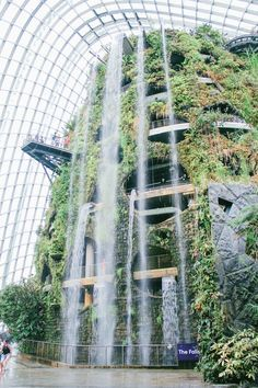Under The Dome And Into The Forestu2026 In Singapore. Singapore SightsGardens  By The BayInto ...