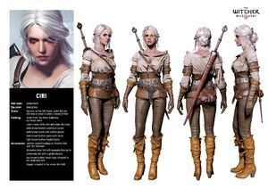 Ciri Witcher 3 The Wild Hunt Character Sheet