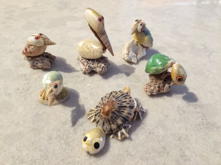 Seashell Animals Pelican Turtle Shorebird by CobaltCatMiniatures