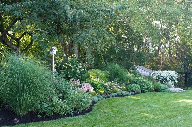 25 best images about landscape designs on pinterest for Maiden grass landscaping ideas
