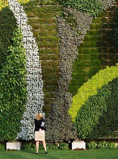 GSky системы растений: Красивые живые стены и зеленые крыши ::